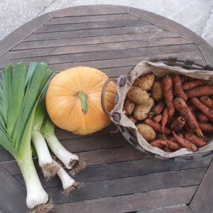 Légumes de la ferme de la Motte Mezilhac